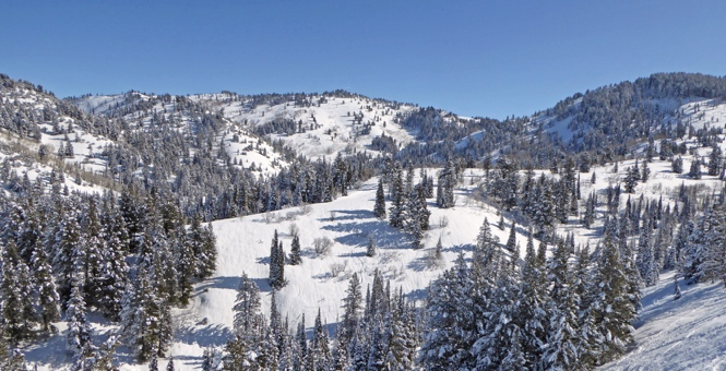 Powder Mountain
