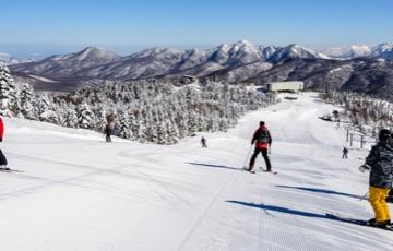 Ski Trip to Japan